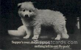 dog100090 - Dog, Dogs, Postcard Post Card
