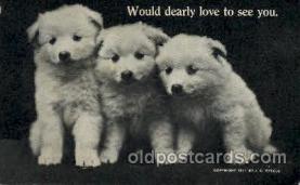 dog100096 - Dog, Dogs, Postcard Post Card