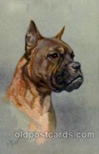 dog100106 - Dog, Dogs, Postcard Post Card