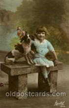 dog100127 - Dog, Dogs, Postcard Post Card