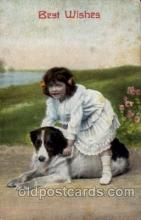 dog100144 - Dog, Dogs, Postcard Post Card
