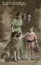 dog100170 - Dog, Dogs, Postcard Post Card