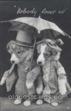 dog100209 - Dog, Dogs, Postcard Post Card