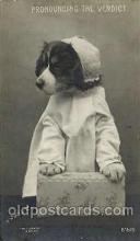 dog100212 - Dog, Dogs, Postcard Post Card