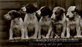 dog100220 - Dog, Dogs, Postcard Post Card