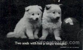 dog100221 - Dog, Dogs, Postcard Post Card