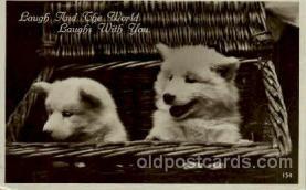 dog100234 - Dog, Dogs, Postcard Post Card