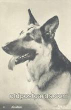 dog100244 - Dog Postcard Post Card