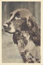 dog100261 - Dog Postcard Post Card
