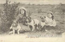 dog100267 - Dog Postcard Post Card