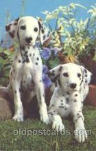 dog100268 - Dog Postcard Post Card