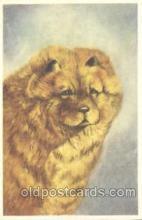 dog100274 - Dog Postcard Post Card