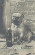dog100276 - Dog Postcard Post Card