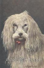 dog100311 - Dog Postcard Post Card