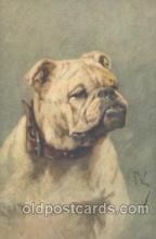 dog100326 - Dog Postcard Post Card