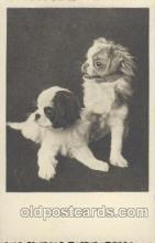 dog100335 - Dog Postcard Post Card