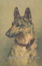 dog100337 - Dog Postcard Post Card