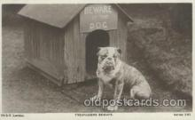 dog100397 - Bull Dog, Dogs Postcard Post Card