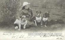 dog100409 - Bull Dog, Dogs Postcard Post Card