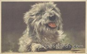 dog100439 - Dog, Dogs Postcard Post Card