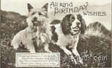 dog100442 - Birthday Wishes, Dog, Dogs Postcard Post Card