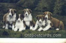 dog100597 - Collie Postcard, Dog Post Card, Old Vintage Antique