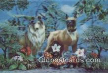 dog100616 - Collie Postcard, Dog Post Card, Old Vintage Antique