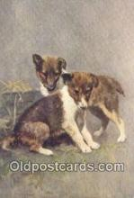 dog100620 - Collie Postcard, Dog Post Card, Old Vintage Antique