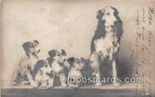dog100686 - Postcard Post Card