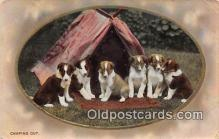 dog100687 - Camping Out  Postcard Post Card