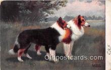 dog100690 - E Dorno Munchen  Postcard Post Card
