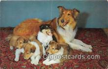 dog100693 - Proud Parent  Postcard Post Card