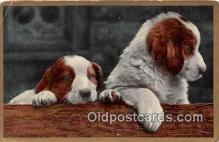 dog100713 - Postcard Post Card