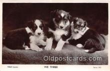 dog100717 - We Three W & K London Postcard Post Card