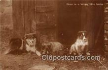dog100719 - Postcard Post Card