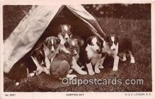 dog100720 - Camping Out W & K London Postcard Post Card