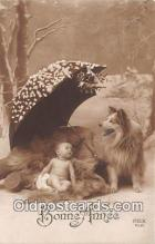 dog100750 - Bonne Annee Rex Postcard Post Card
