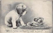 dog200002 - Artist Vincent Colby 1909 Postcard Post Card