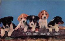 dog200007 - Handsome Litter Medici Society Ltd, London Postcard Post Card