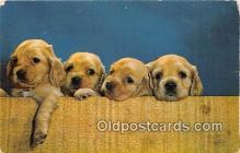 dog200053 - Puppy Knot Hole Gang Corning, NY, USA Postcard Post Card