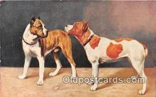 dog200075 - Printed in Germany Postcard Post Card