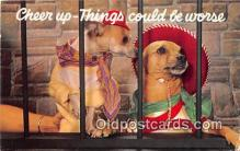 dog200097 - Cameo Original Plastichrome by Colourpicture Publishers, Inc, Boston, Mass, USA Postcard Post Card