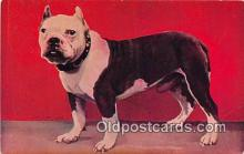 dog200108 - JG I OW  Postcard Post Card