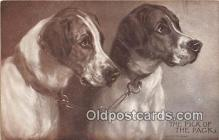 dog200112 - Pick of the Pack Painted By Hardy Postcard Post Card