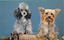 dog200128 - Playmates Plastichrome by Colourpicture Publishers, Inc, Boston, Mass, USA Postcard Post Card