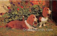 dog200132 - Basset Hounds Salmon Watercolour Postcard Post Card