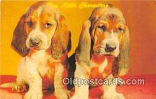 dog200138 - Basset Pups Ektachrome by Aian Felix Postcard Post Card
