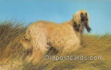 dog200182 - Afghan Hound Salmon Watercolour Postcard Post Card