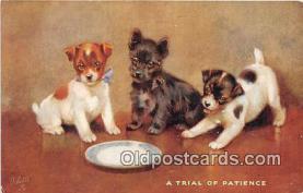 dog200198 - Oilette Postcard Post Card