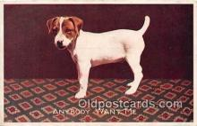 dog200204 - Postcard Post Card
